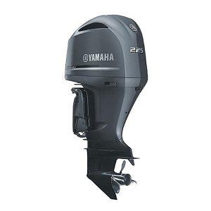 Yamaha F70 - Robin Curnow